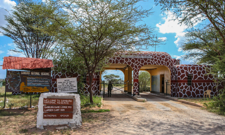 3 Days Samburu Wildlife Safari